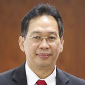 Prof. I.B.R. Supancana